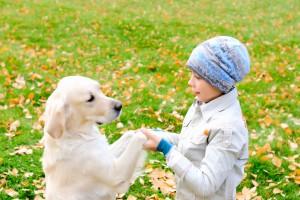 Выбор первого друга для малыша